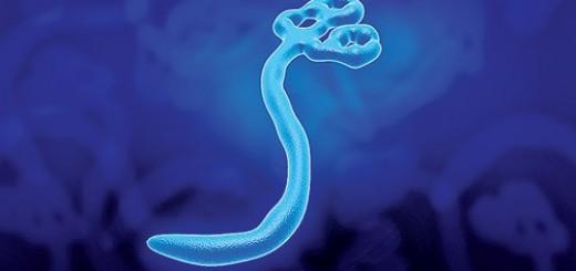 13950908_ebola