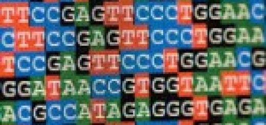 13970220_DNA